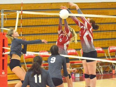 Bulldogs fall in volleyball