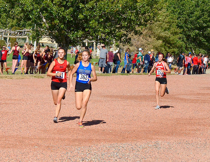 DHS Cross Country