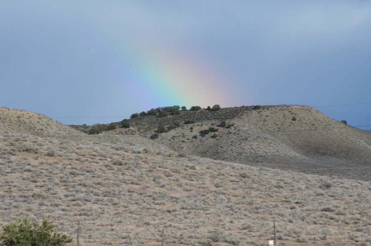 RainbowHHS.JPG