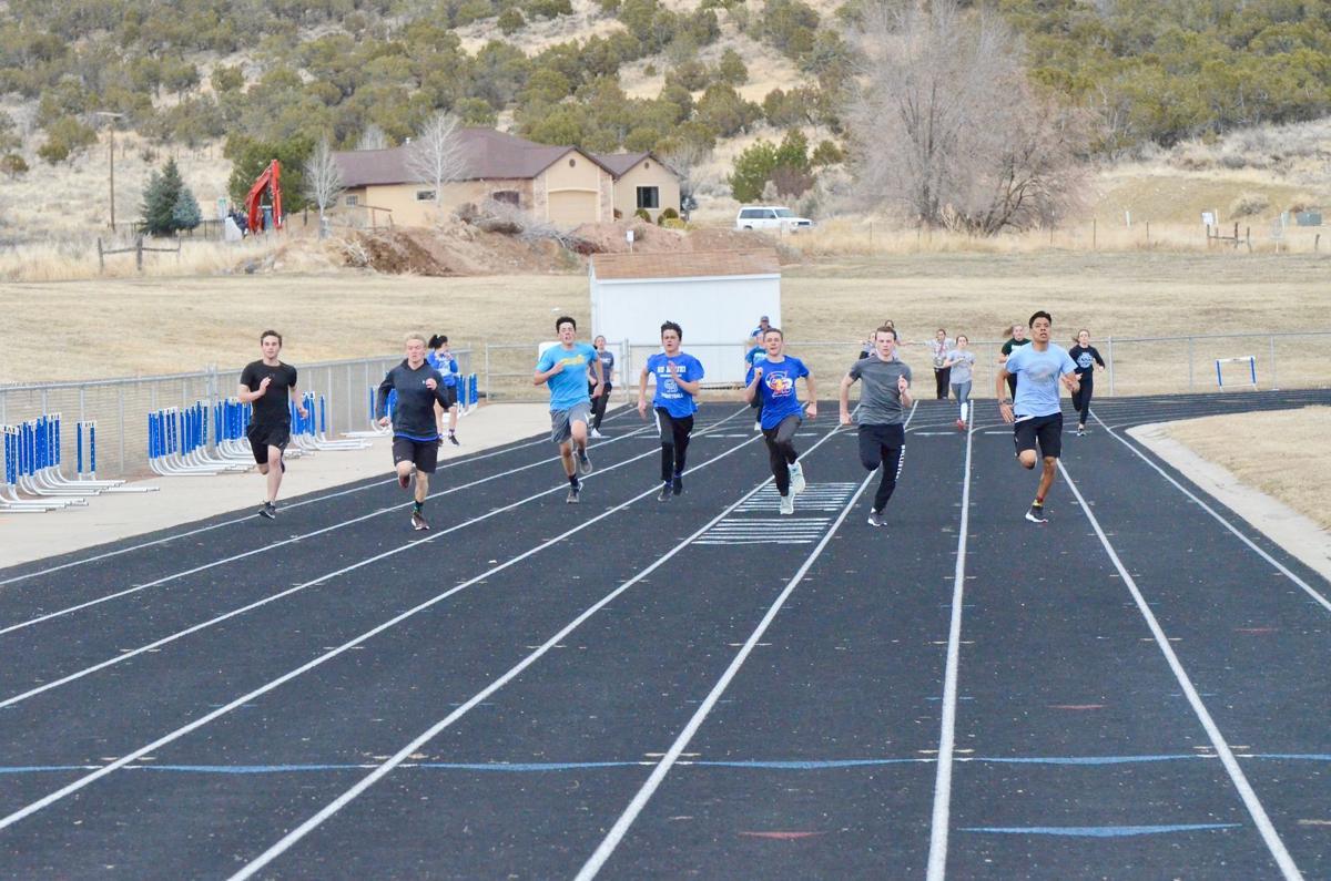 CTRK sprint work