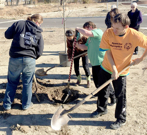City of Delta observes Arbor Day with belated tree planting
