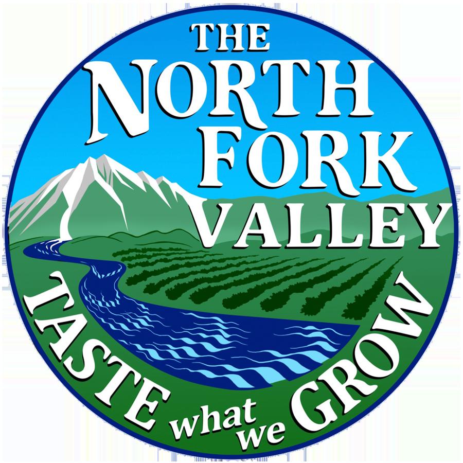 NFV Logo Color