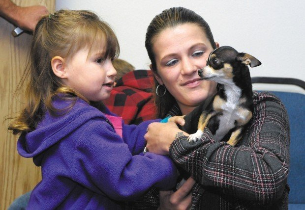 Family reunited with Chihuahua