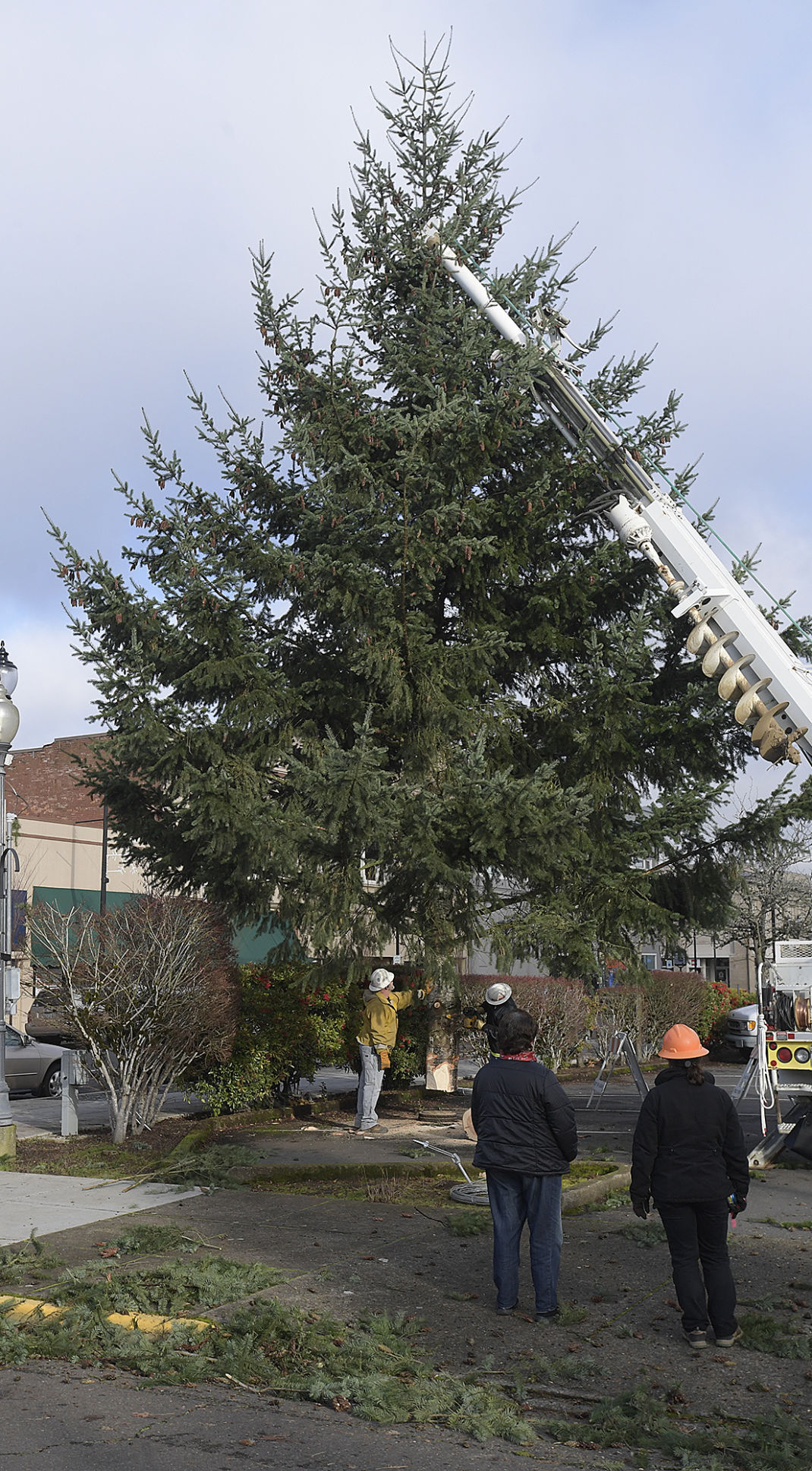 120220-adh-nws-Albany Christmas Tree02-my