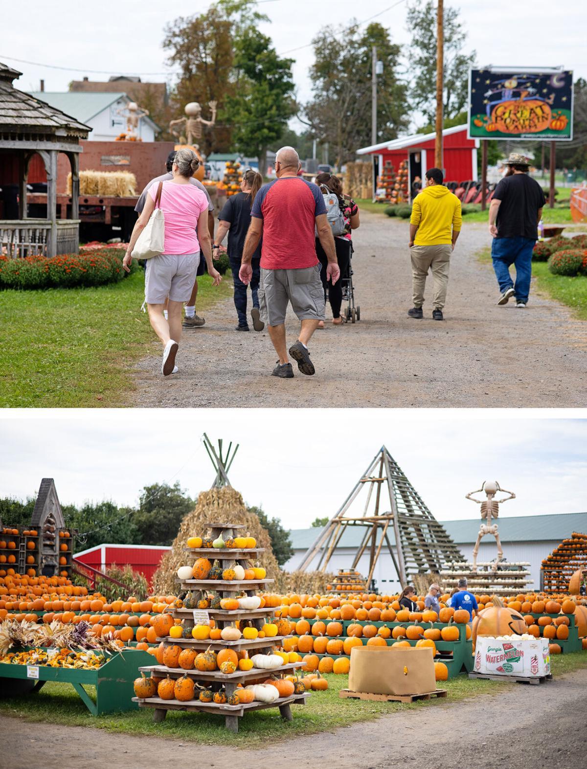 Great Pumpkin Farm visitors