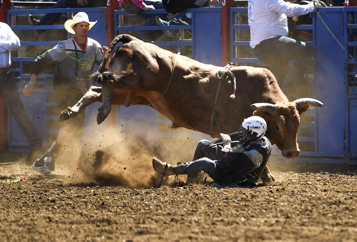 Philomath Frolic and Rodeo