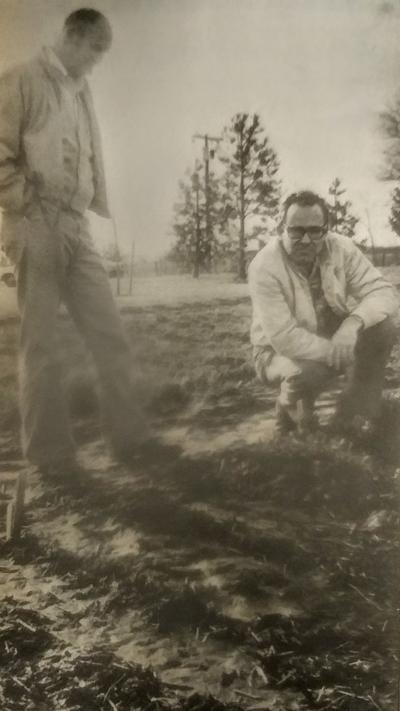 Farm crops 1979