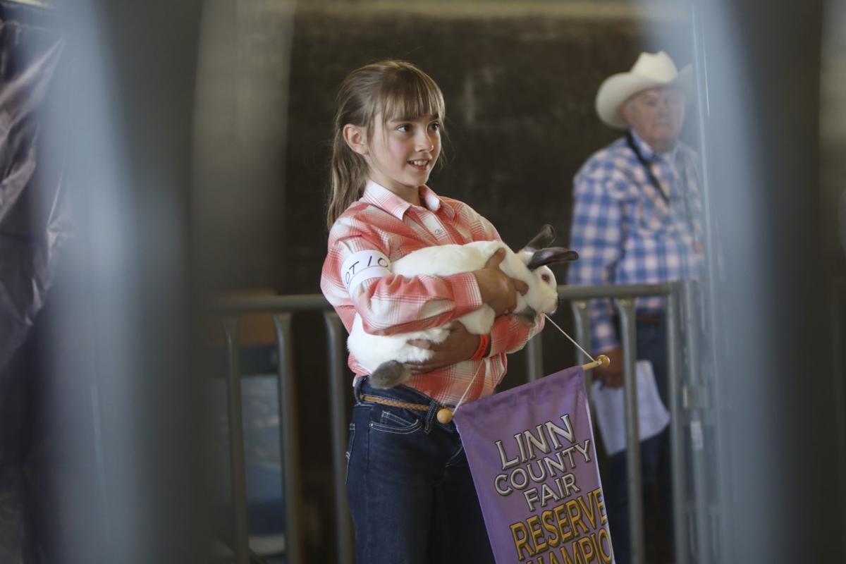 Linn County Fair Livestock Auction 5