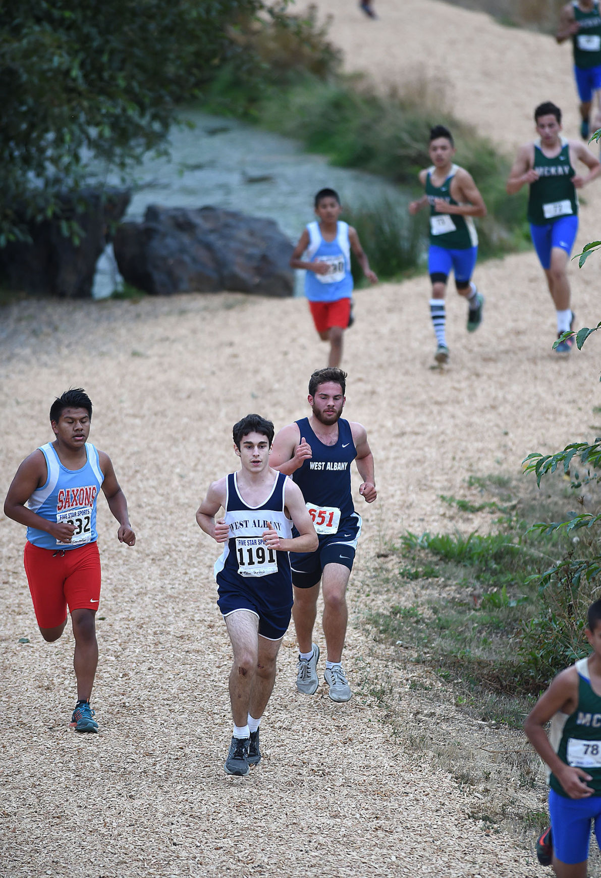 albany cross country meet