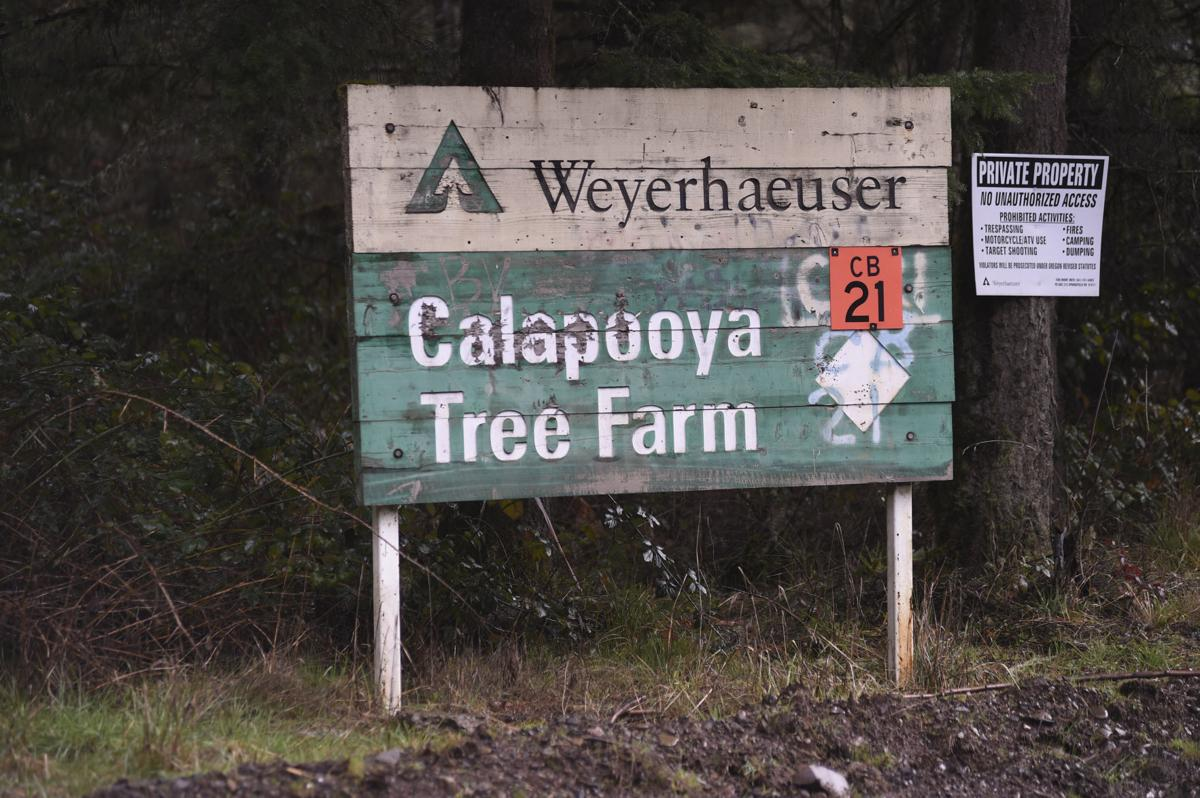 County prepares Upper Calapooia for public use | News