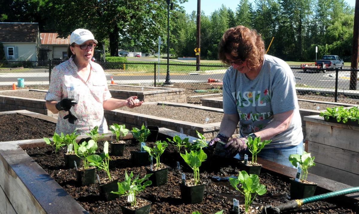 Porter Park Community Garden