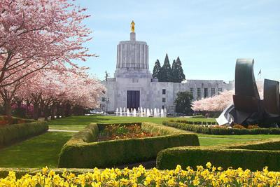 Capitol in the spring