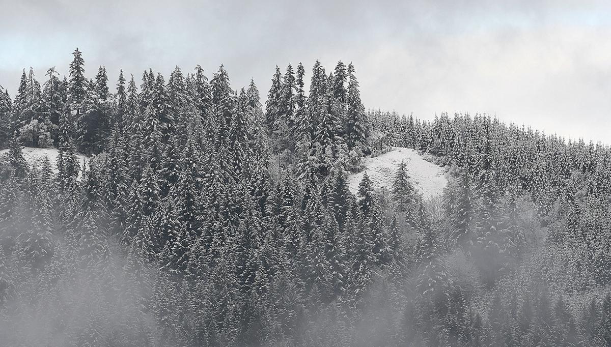 011520-adh-nws-Snow-my
