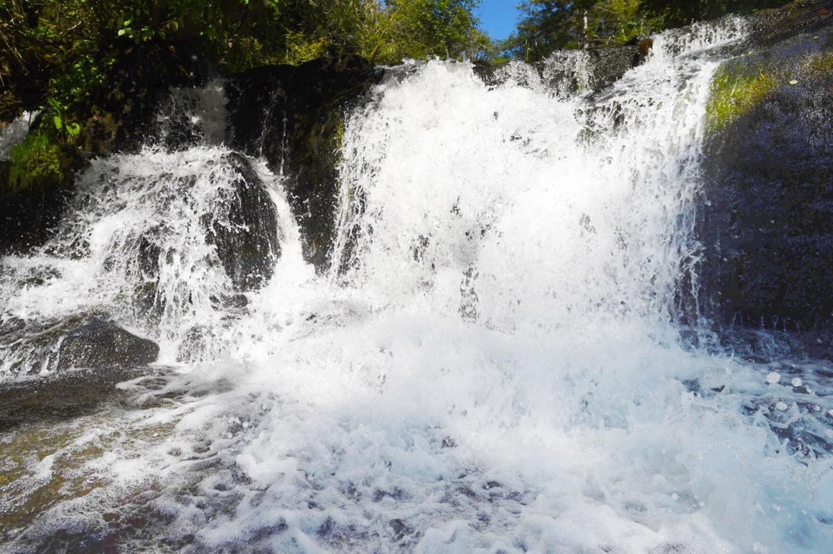 Alsea Falls stock