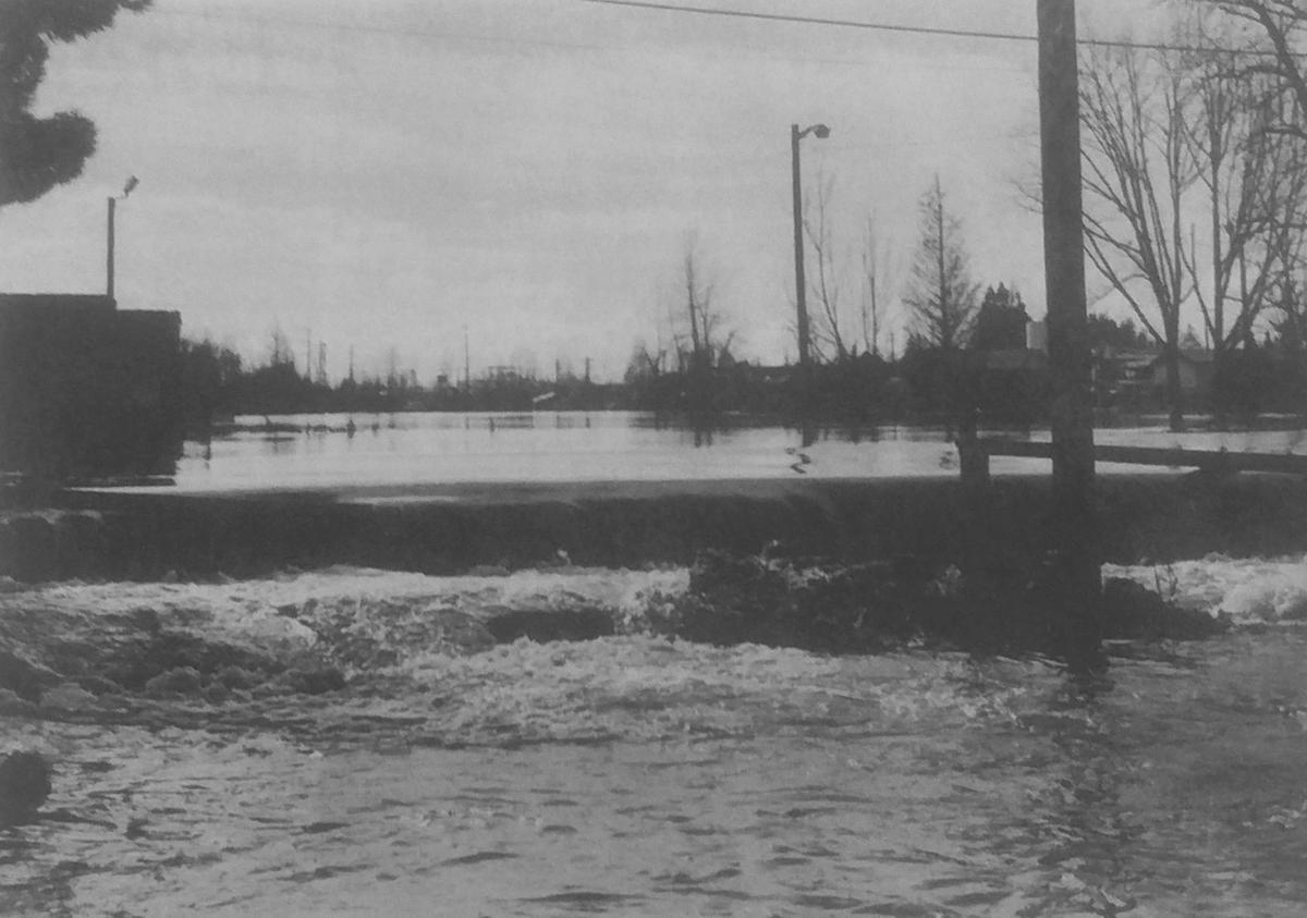 GT flood 14
