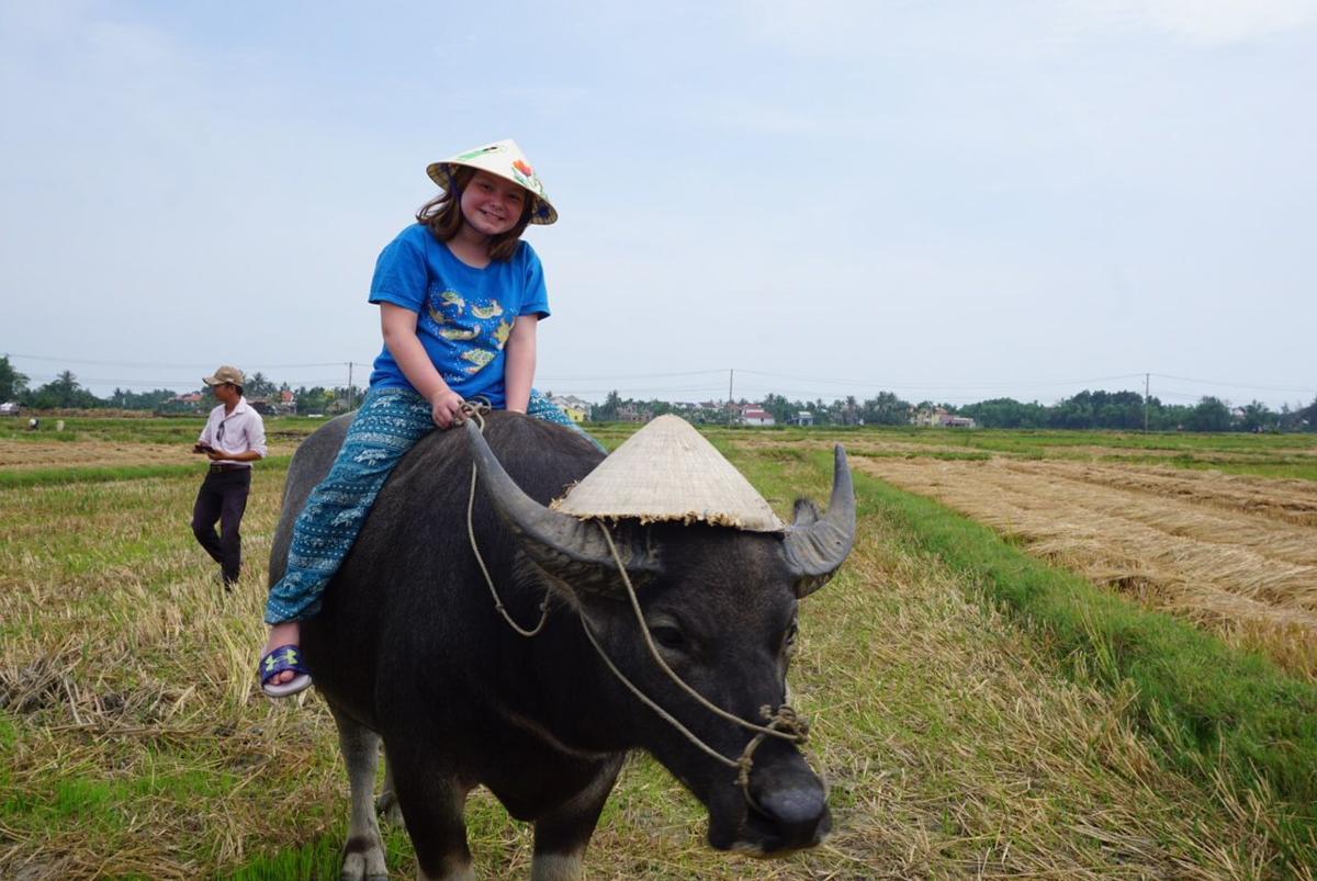 Trip, Vietnam