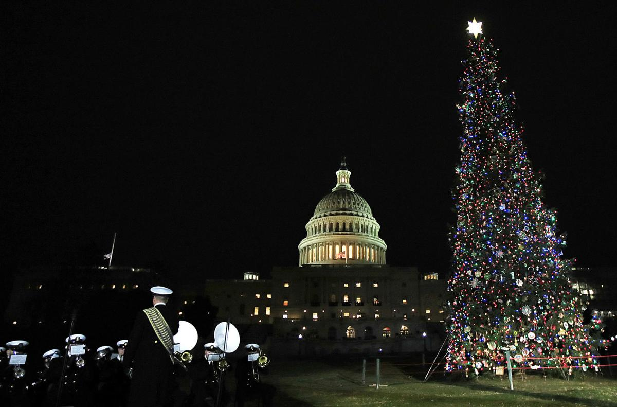Capitol Christmas Tree01a