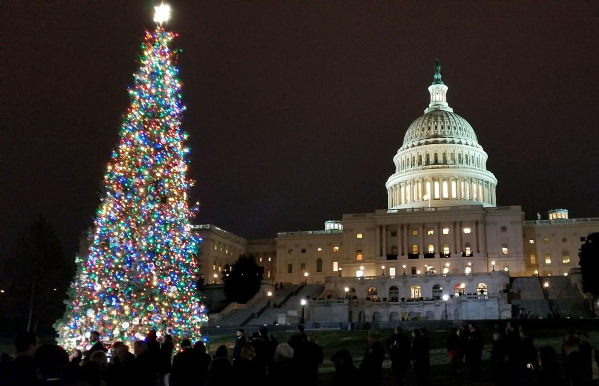 120718-adh-nws-Capitol Christmas Tree01
