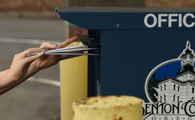 051716-cgt-nws-ballot-box-gv01.JPG (copy)