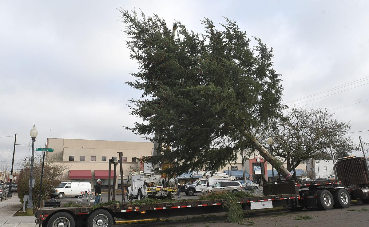 120220-adh-nws-Albany Christmas Tree01-my