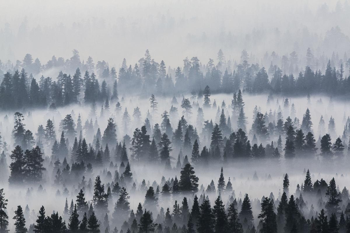 Oregon Wildfires (copy)
