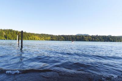 Lewis Creek at Foster Lake