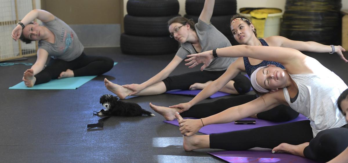 071518-adh-nws-Puppy Yoga03-my