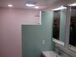Bathroom Remodel - Shower Wall