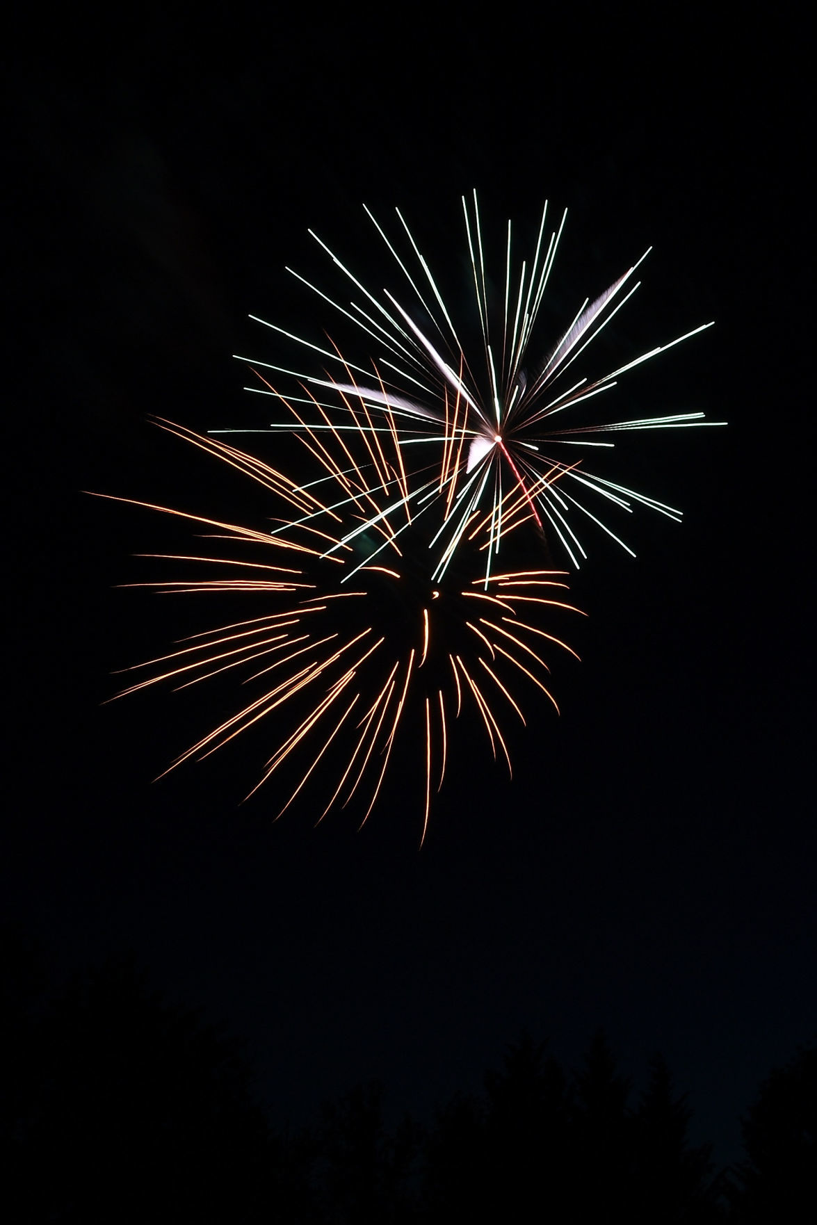071020-pe-nws-philomath frolic fireworks gallery-LN42.JPG