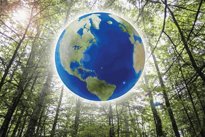 Destroying forests