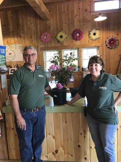 Springlook Farmcelebrates re-opening