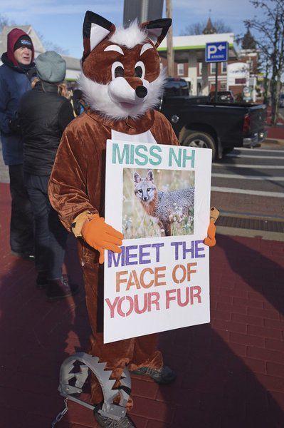 Anti-fur protest targets MissNH organization