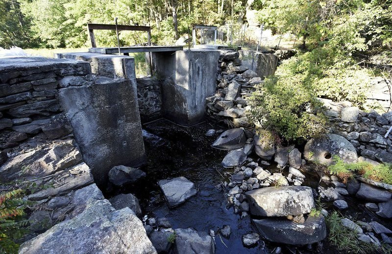 Moeckel Pond dam work a community effort