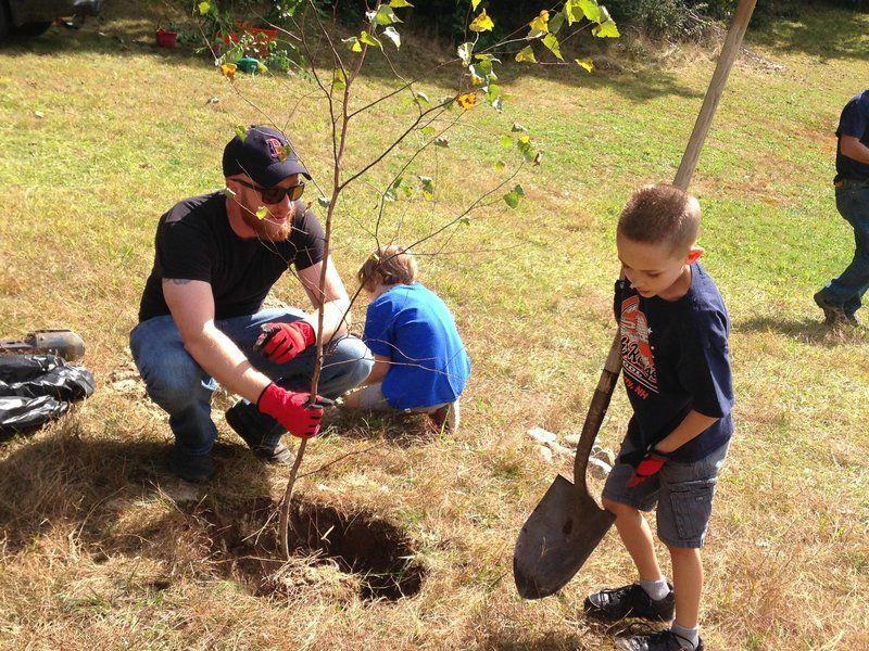 Nature's teaching tools