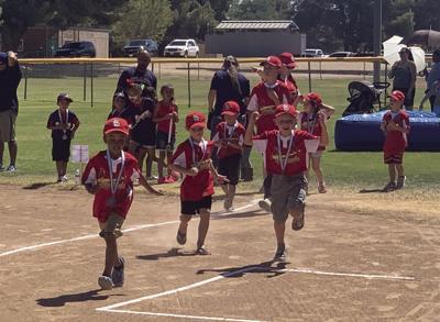 T-Ball Cardinals