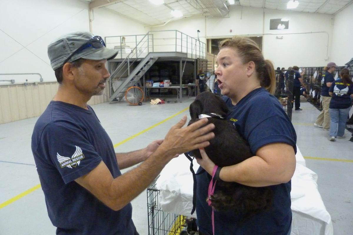Tate County puppy mill raid