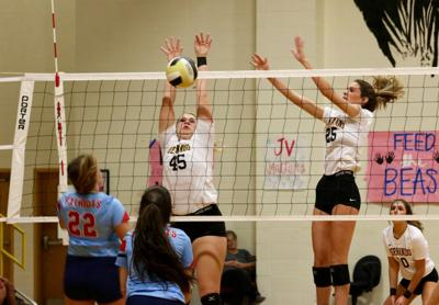 Lewisburg - Hernando volleyball