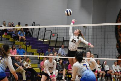 DeSoto Central Lady Jags volleyball