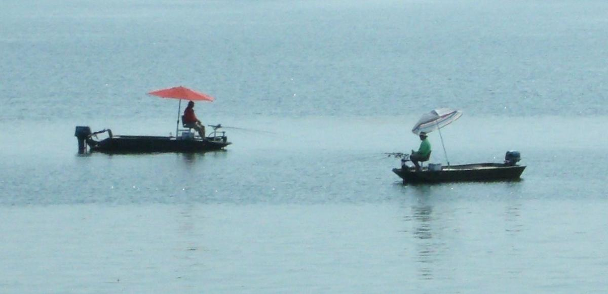 Arkabutla Lake fishing report