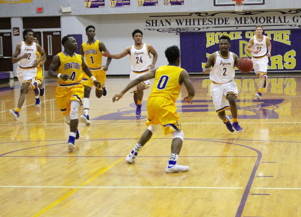 DeSoto Central basketball