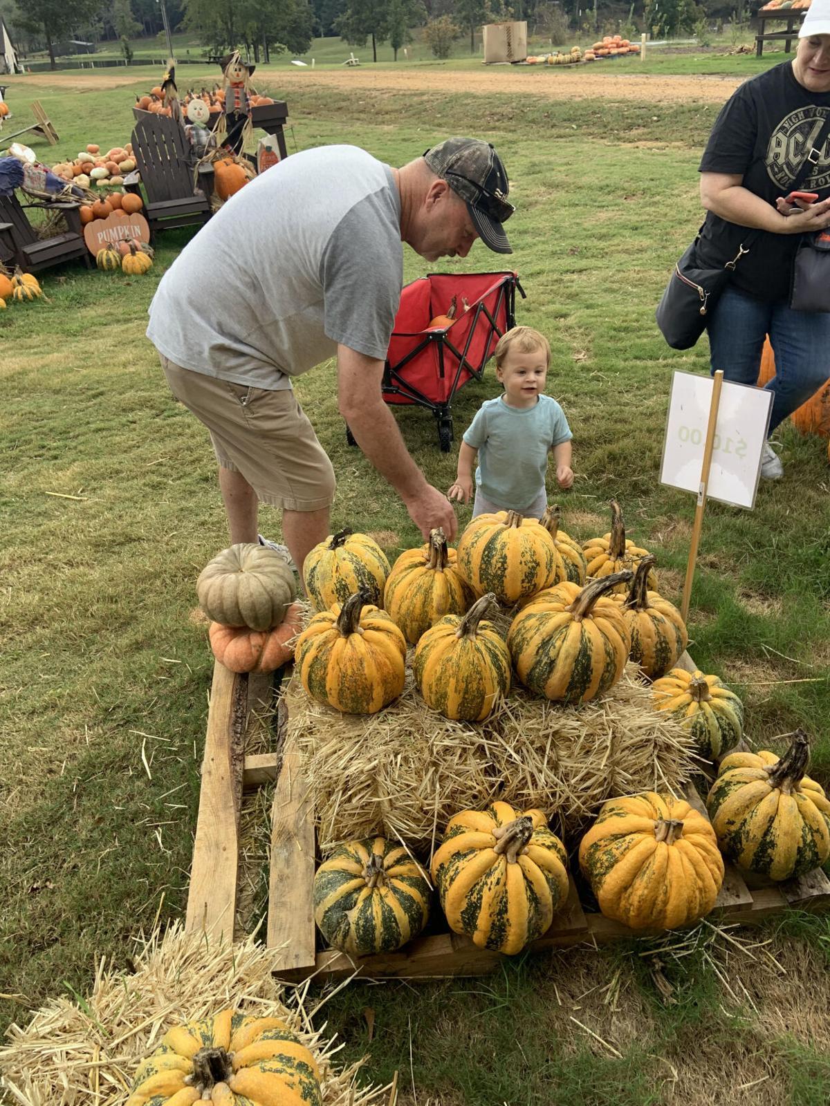 Bolin Grove Farms picking a pumpkin