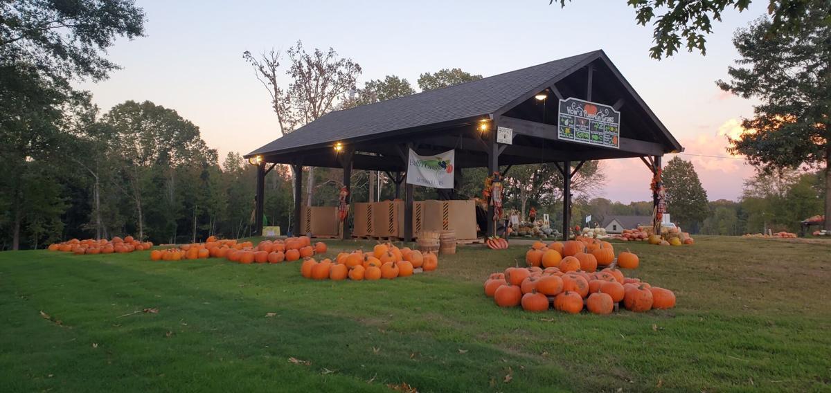 Bolin Grove Farms pumpkin barn