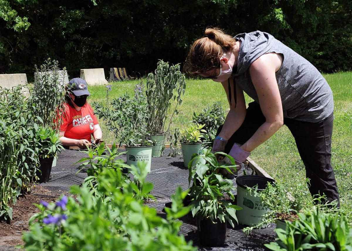 SUBASE Environmental Team Plants Pollinator Gardens