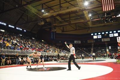 Bearcats State Wrestling