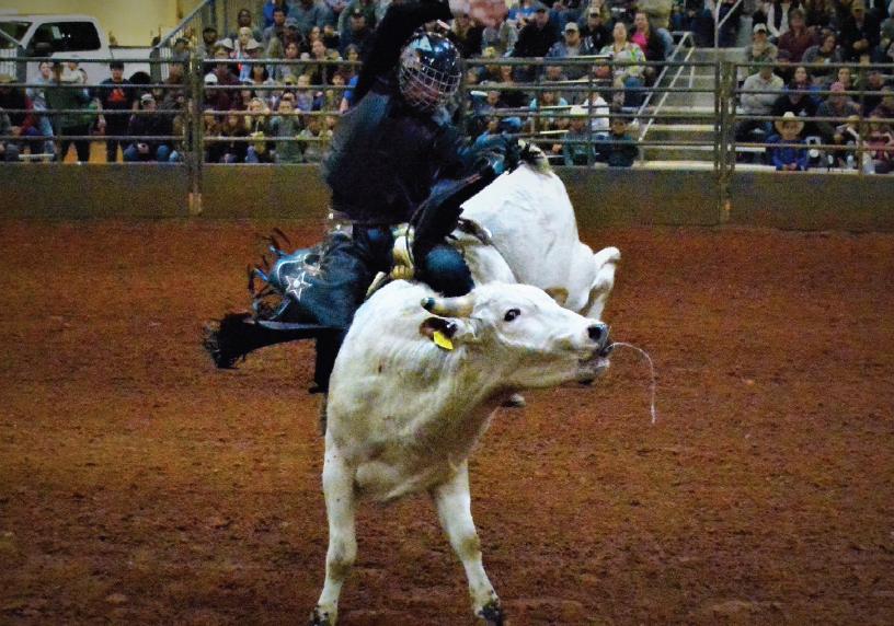 Sigma Nu Bull Bash rides into fairgrounds