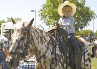 Ltittle cowboy