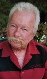 Michael Vernon Lardner