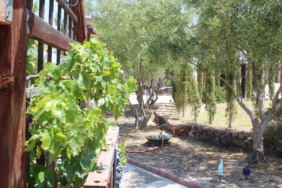 Cypress Hill Garden