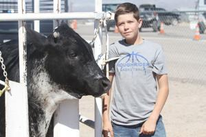 County Fair gives youths opportunity to shine