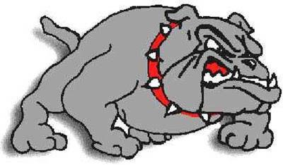 Safford Bulldogs